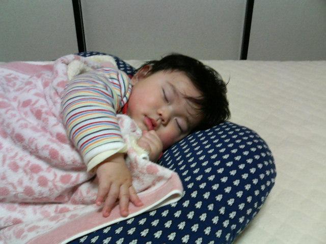 横に寝るナガオー
