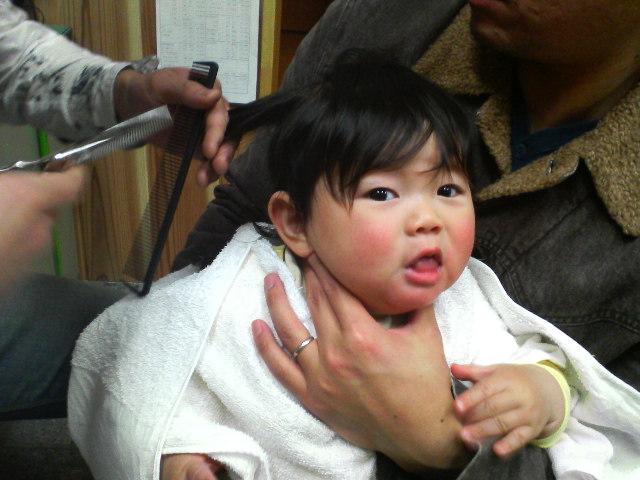髪を切るナガオー1